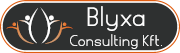 Blyxa Consulting Kft.