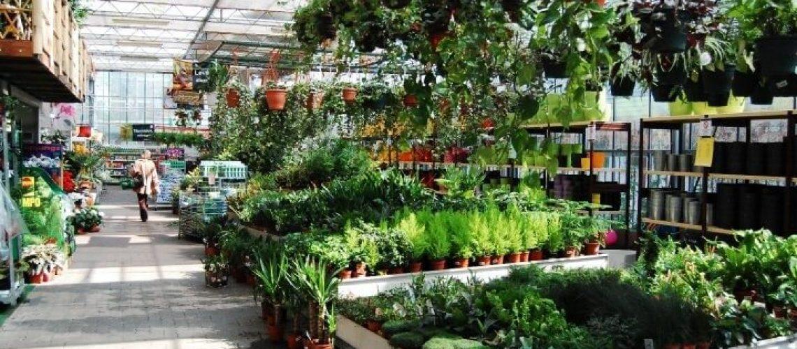Kertészeti üzemek korszerűsítése - VP2-4.1.3-20 pályázat